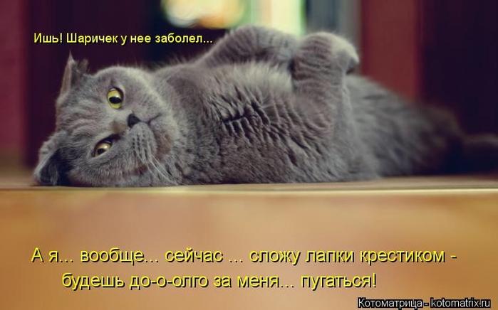 kotomatritsa_Ib (700x436, 161Kb)