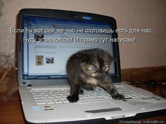 kotomatritsa_LC (700x524, 242Kb)