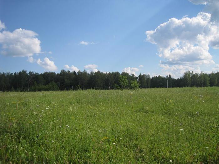 земельный участок (700x525, 272Kb)