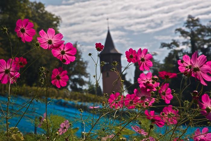 Остров цветов Майнау. Германия. Боденское озеро