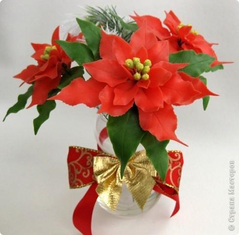 Poinsettia.  Ideas y clase magistral sobre la escultura de la estrella de Navidad (11) (488x480, 114Kb)