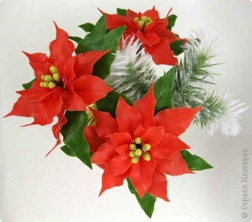 Poinsettia.  Ideas y clase magistral sobre la escultura de la estrella de Navidad (13) (520x457, 120Kb)