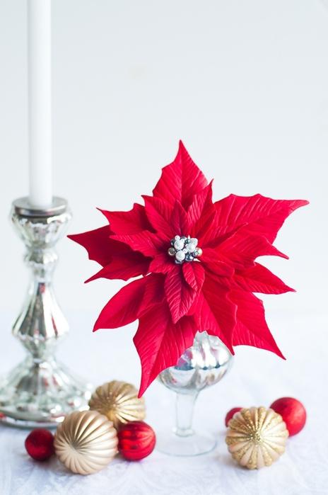 Poinsettia.  Ideas y clase magistral sobre la escultura de la estrella de Navidad (17) (464x700, 167Kb)