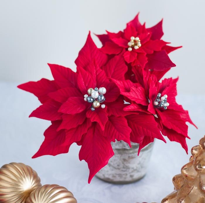 Poinsettia.  Ideas y clase magistral sobre la escultura de la estrella de Navidad (23) (700x693, 268Kb)