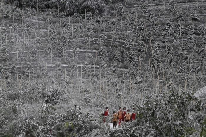 извержение вулкана синабунг фото 4 (700x466, 348Kb)