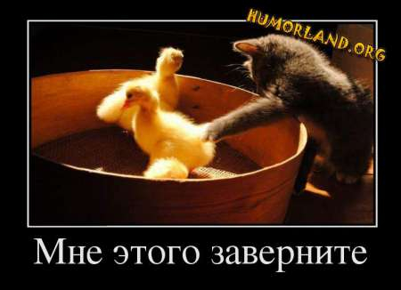 1385206413_humorland.org_demotivator_mne-etogo-zavernite (450x326, 89Kb)