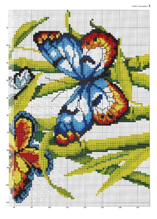 бабочки (3) (500x700, 566Kb)