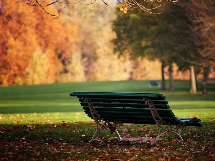 скамейка в парке/1385805348_lavochka_v_parke (700x525, 150Kb)
