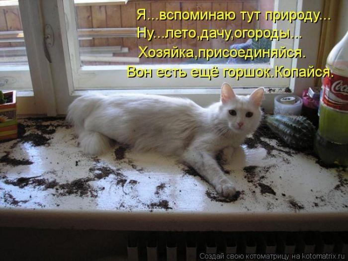 1385896934_cm_20131129_03417_009 (700x525, 191Kb)