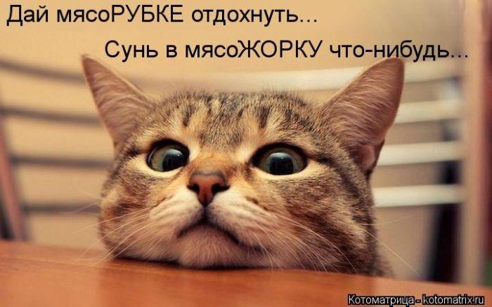 1385896951_cm_20131129_03417_019 (700x438, 147Kb)