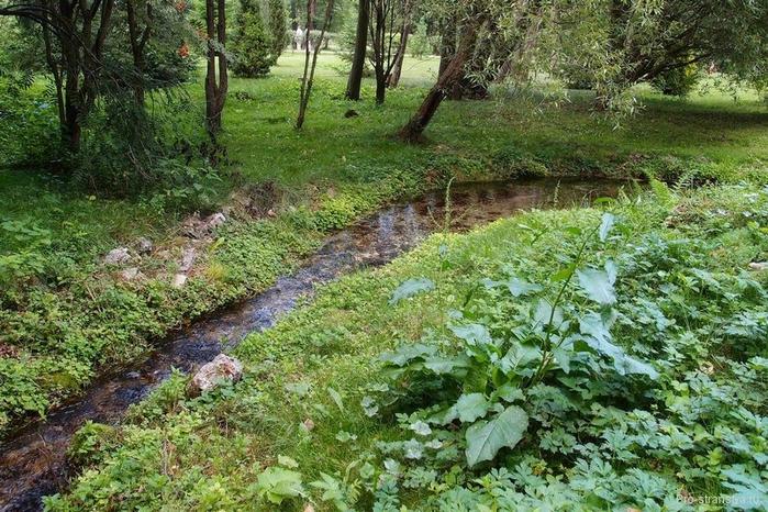 Ручей в лесу (700x466, 352Kb)