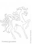 Превью zhivotnye-krasochnye-krasivye-fotografii-neobychnye-fotografii_4023673740 (349x480, 48Kb)
