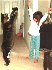 самая большая кошка кот/1386120413_post1215911272795350 (212x288, 39Kb)