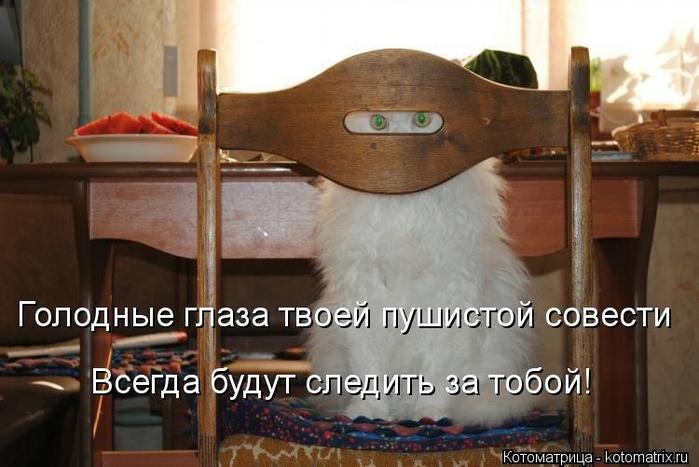 kotomatritsa_Fr (700x467, 208Kb)