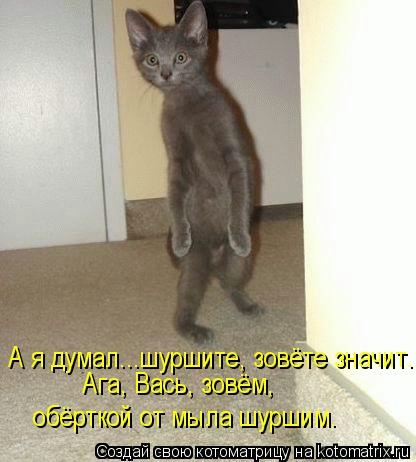 kotomatritsa_KH (416x462, 78Kb)