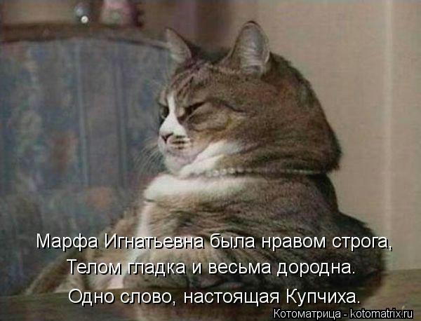 kotomatritsa_ou (600x458, 105Kb)