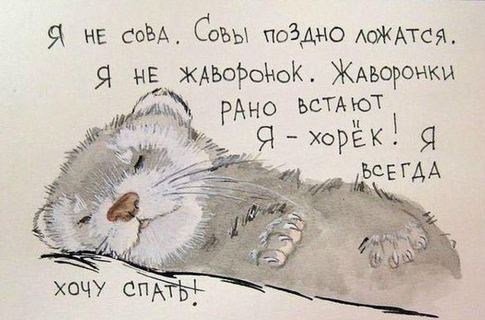 [Изображение: 107702644_0_c9663_caa8bcc3_orig.jpg]