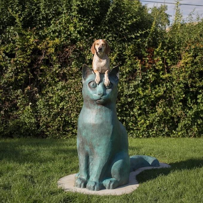 балансирующая собака мэдди фото 14 (680x680, 446Kb)