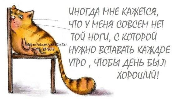1369423079_frazochki-11 (604x326, 101Kb)