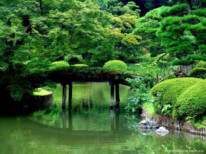 Сад Рикугиэн Rikugien garden (яп. 六義園 Рикугиэн) 15 (700x525, 416Kb)