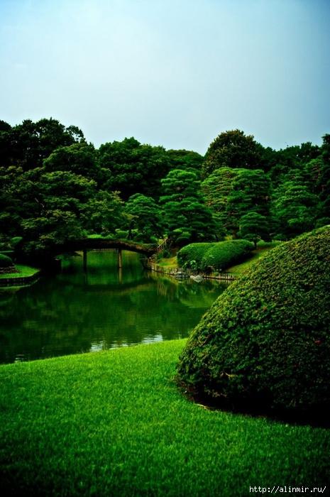 Сад Рикугиэн Rikugien garden (яп. 六義園 Рикугиэн) 13 (465x700, 273Kb)