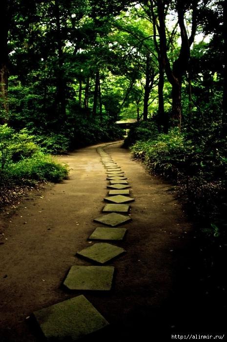 Сад Рикугиэн Rikugien garden (яп. 六義園 Рикугиэн) 12 (465x700, 306Kb)