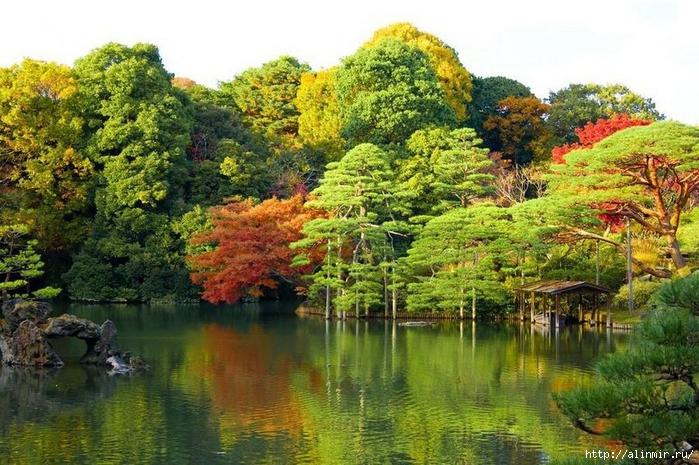 Сад Рикугиэн Rikugien garden (яп. 六義園 Рикугиэн) 3 (700x465, 328Kb)
