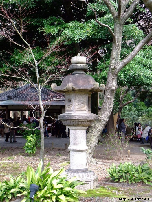 Сад Рикугиэн Rikugien garden (яп. 六義園 Рикугиэн) 2 (525x700, 436Kb)
