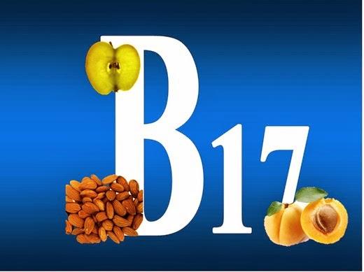 vitamin-B171(2)[7] (520x389, 30Kb)