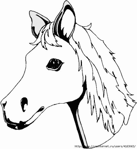 horse (554x600, 104Kb)