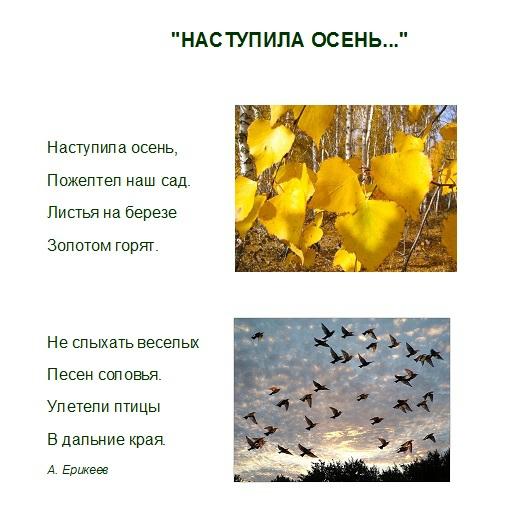 http://img0.liveinternet.ru/images/attach/c/9/107/81/107081146_large_9.jpg