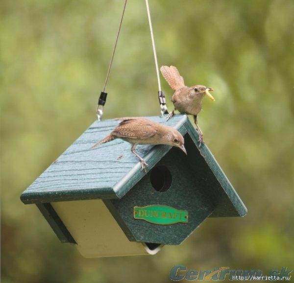 Чем кормить птиц и СКВОРЕЧНИК своими руками (27) (600x578, 123Kb)