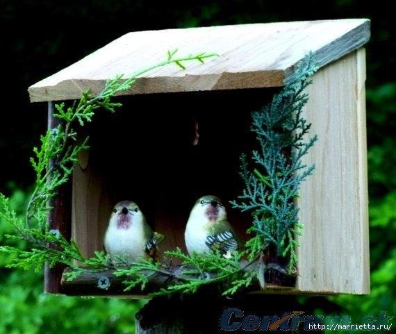 Чем кормить птиц и СКВОРЕЧНИК своими руками (29) (570x481, 149Kb)