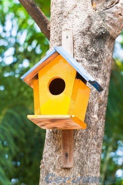 Чем кормить птиц и СКВОРЕЧНИК своими руками (33) (399x600, 164Kb)