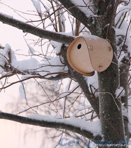 Чем кормить птиц и СКВОРЕЧНИК своими руками (45) (460x519, 144Kb)