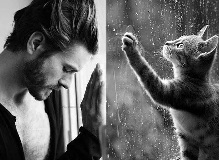Коты и мужчины фото