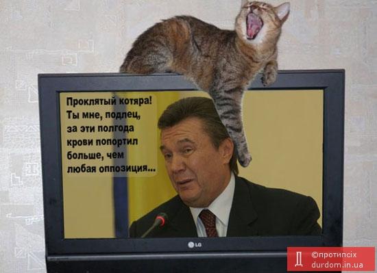 3821971_93223022_Ne_zatknyosh_oppozicii_rot_kogda_oppoziciya__kot (550x399, 104Kb)