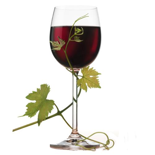 vino-kaberne-sovinon  (500x500, 123Kb)