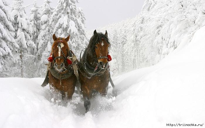 Тихо падает снег…
