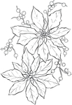������ Poinsettia-Line-Art-GraphicsFairy (481x700, 201Kb)