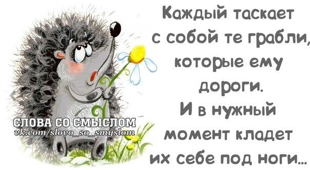 1386700555_frazochki-4 (604x332, 118Kb)