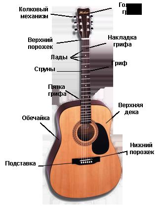 Pro Guitars