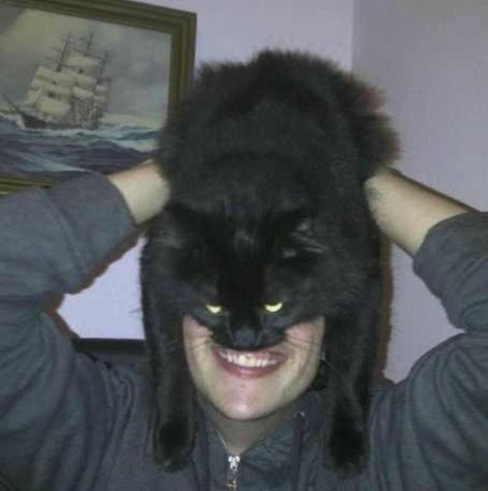 кэтмен интернет-мем 3 (695x700, 175Kb)
