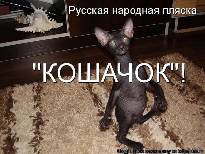 kotomatritsa_Kr (700x524, 264Kb)