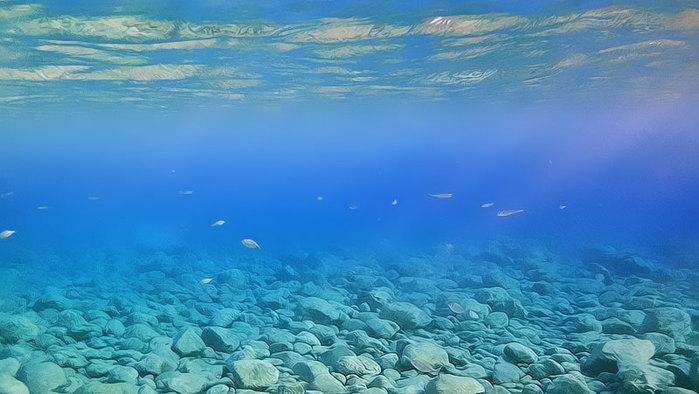 Первый опыт подводной фотосъемки