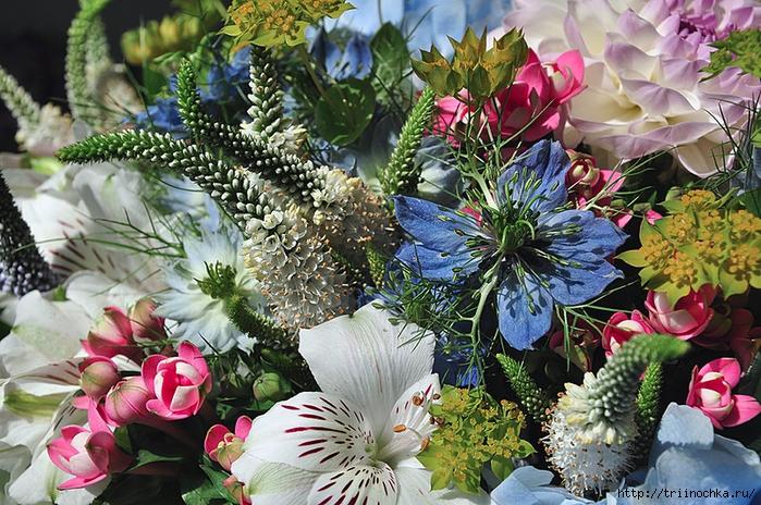 Какие цветы украсят сад зимой?