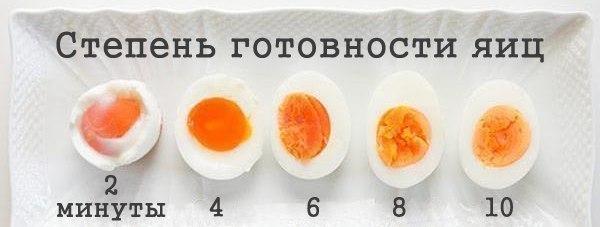 egg (600x227, 89Kb)