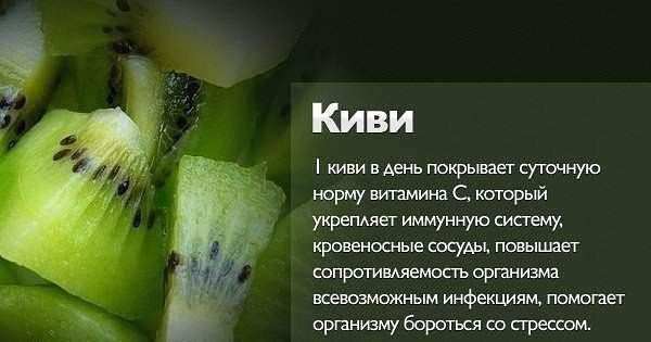 киви (600x315, 27Kb)