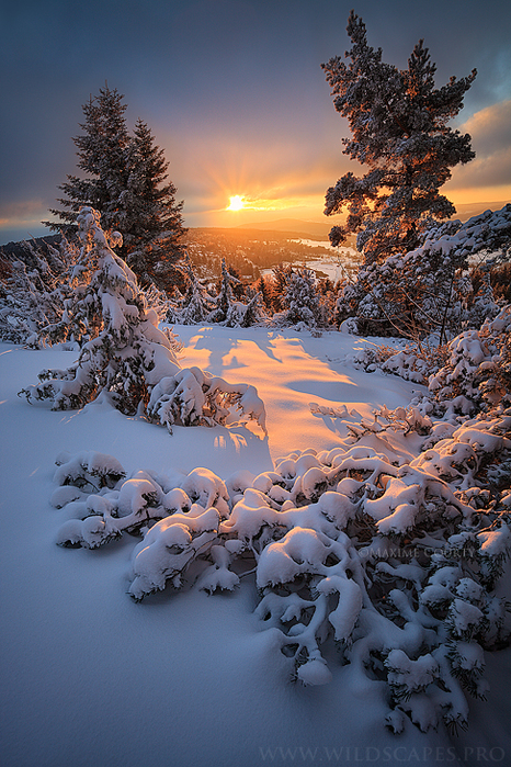 instant_of_light_by_maximecourty-d5oas87 (466x700, 552Kb)