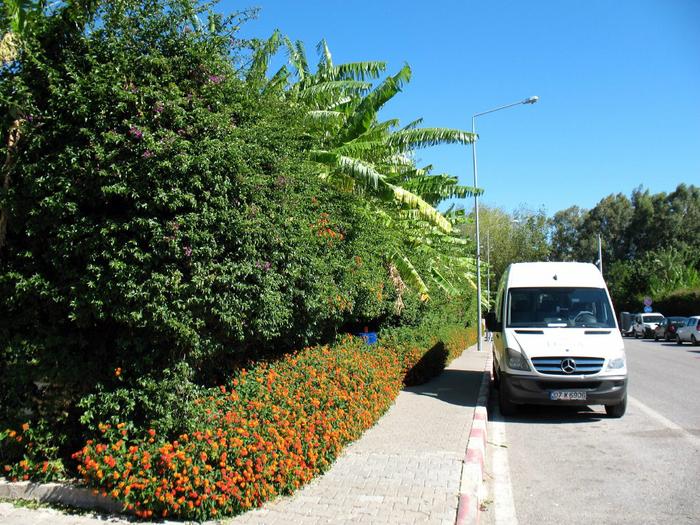 01 тротуар на дороге у отеля (700x525, 552Kb)